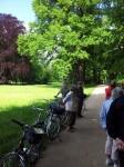 im Branitzer Park
